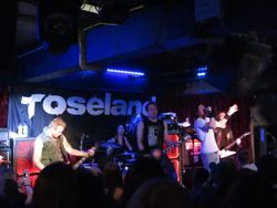 Toseland, 2016